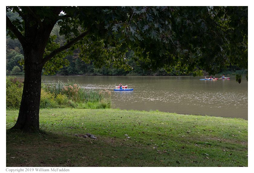 Kayakers on Dow Lake, as seen from the Bulldog Picnic Shelter